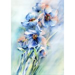 Nicky Hunter, Blue Poppy